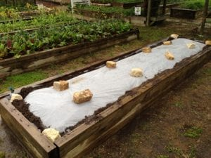 garden polythene sheet uses